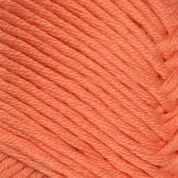 3316 Orange