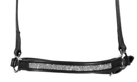 NR-AUR-WH (2)