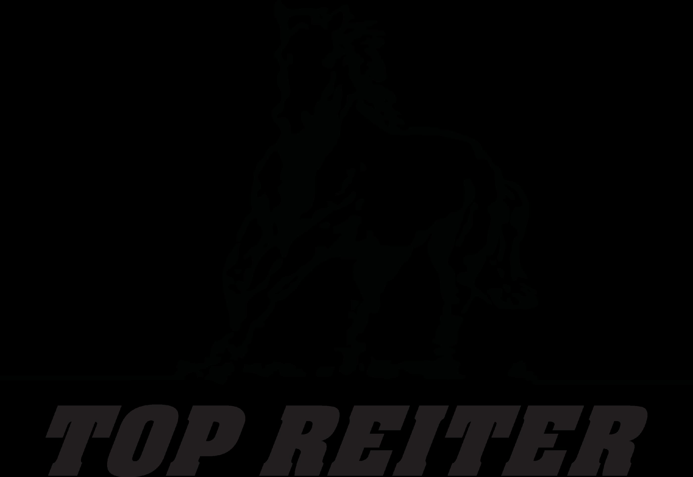 top_reiter_logo