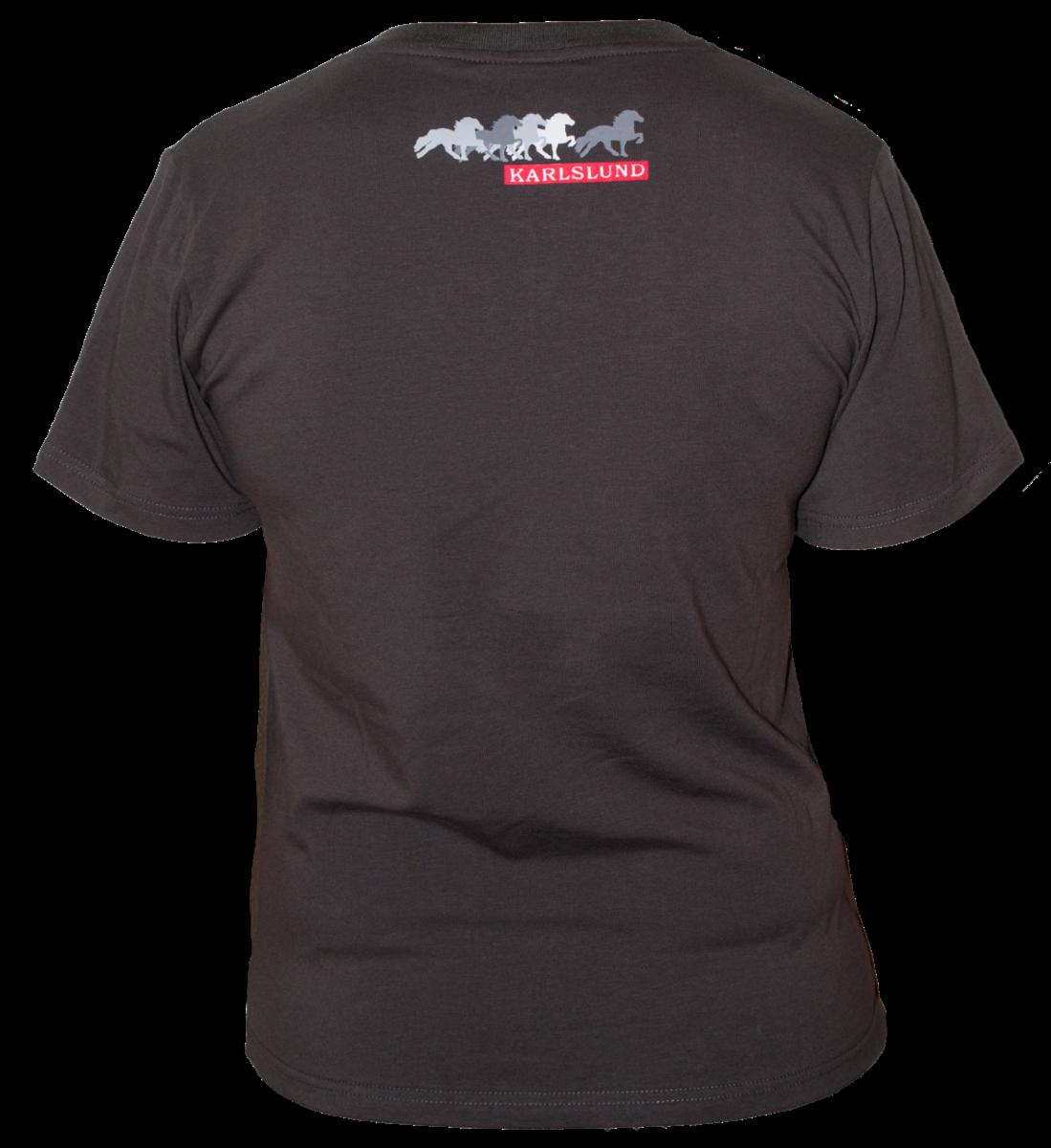 karlslund  t-shirt_k546-gra-back