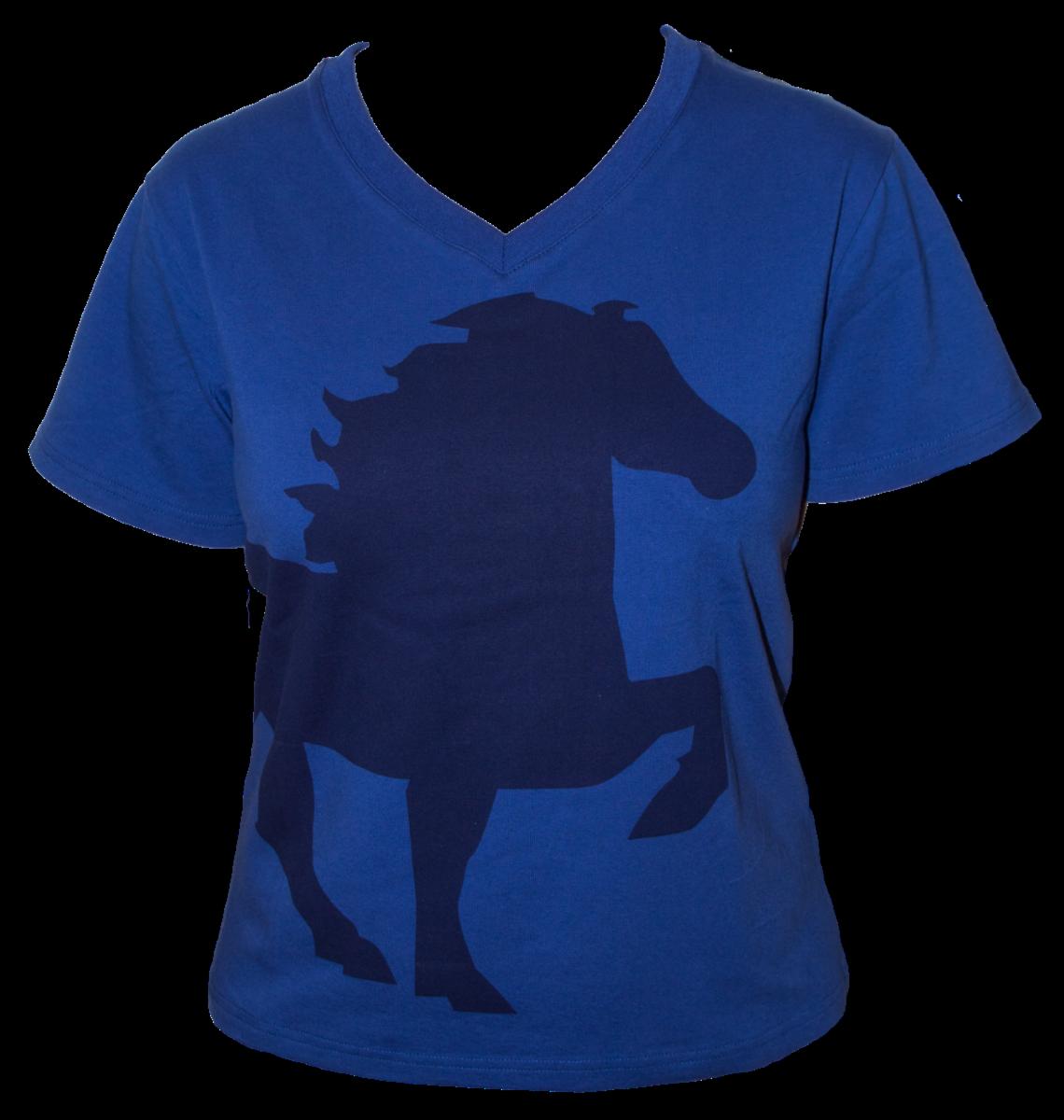 karlslundk546-blu