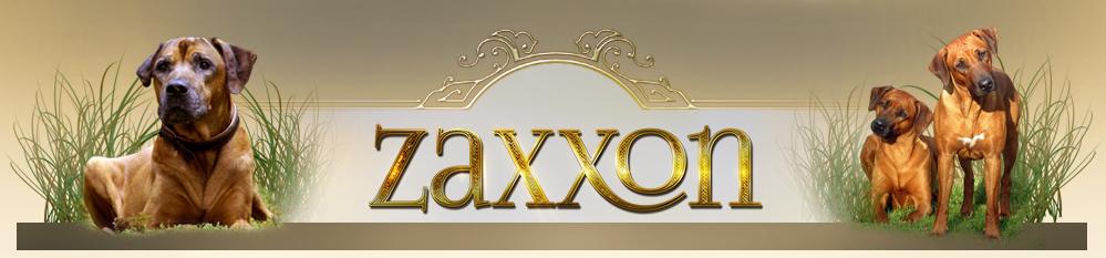 zaxxon-mobilbakgrund
