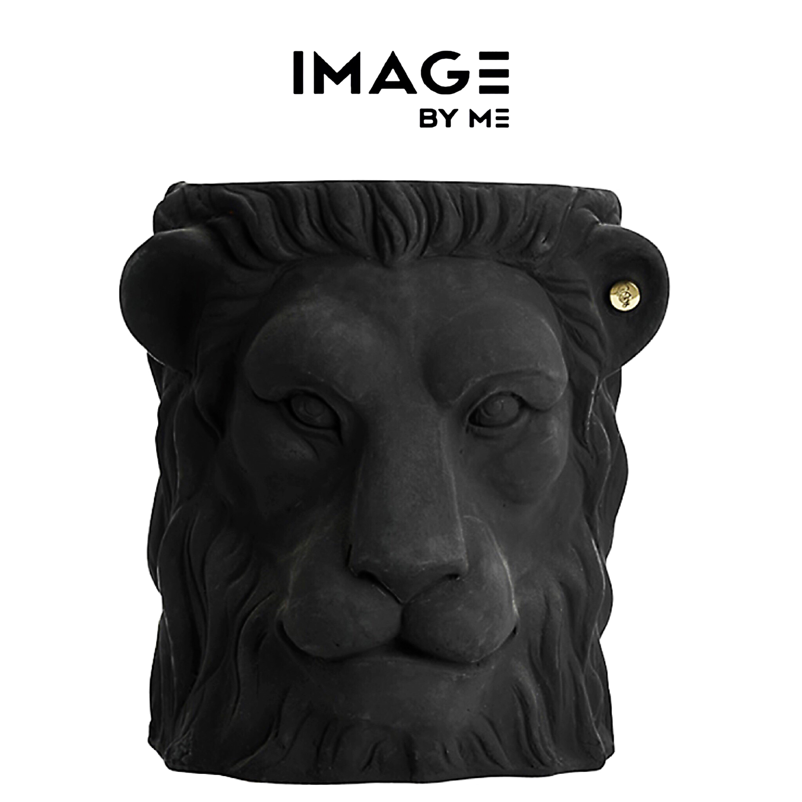 image by me lion pot