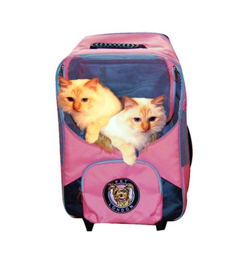 transportväska-pet-london