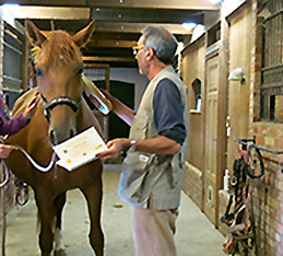 Hästen identifieras. Microchip avläses, signalementsbeskrivningen i passet kontrolleras.