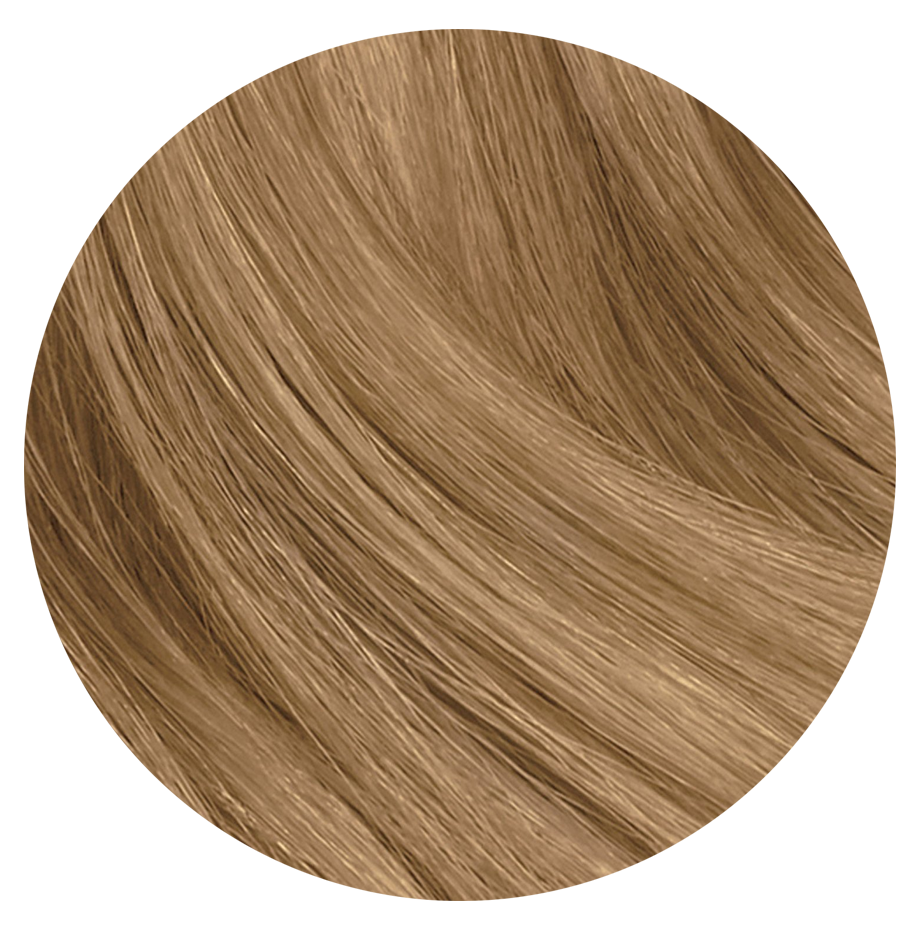 8A Slavic Ash Blonde - Sach Hair Extensions Color Chart