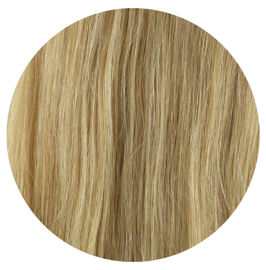 14-22 Sandie Cream- Sach Hair Extensions Color Chart copy