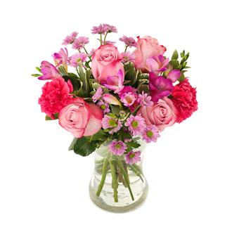 Cerise och rosa