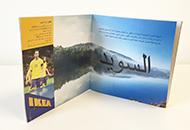 Språkbolaget – översätter informationstexter till arabiska – www.sprakbolaget.se
