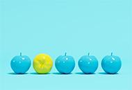 Språkbolaget – översätter marknadstexter, utbildningsmaterial & banners till engelska – www.sprakbolaget.se