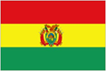 Bolivia car flag