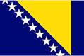 Bosnia & Herzegovina car flag