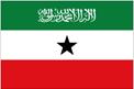 Somaliland car flag