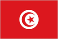Tunisia car flag