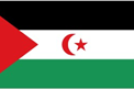 Western Sahara car flag