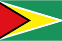 Guyana car flag