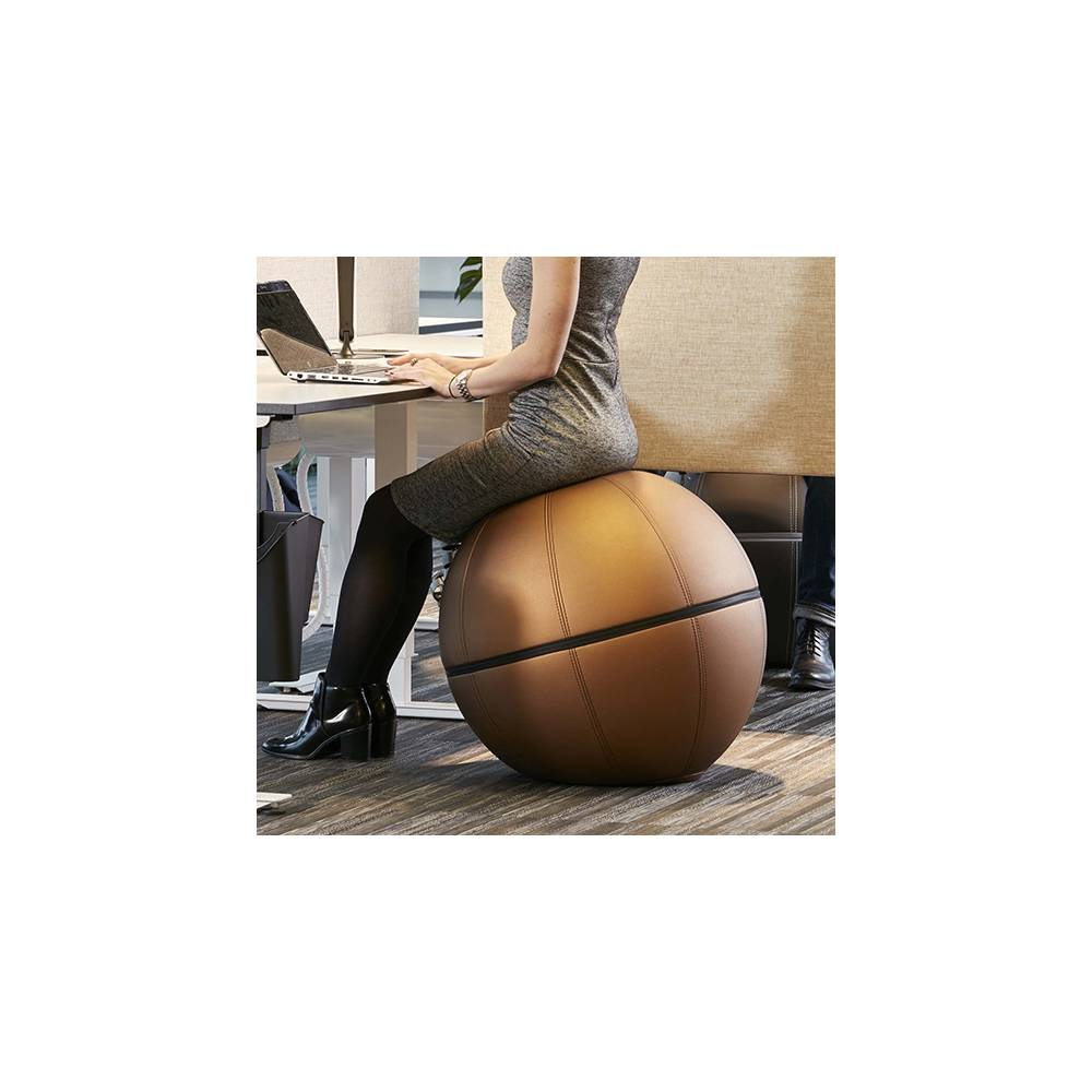 goetessons-office-ballz-ergonomisk-sittmoebel