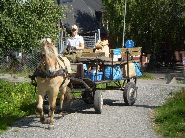 Sindarve Luring & jag på sopkörning i Upplands-Väsby 2008