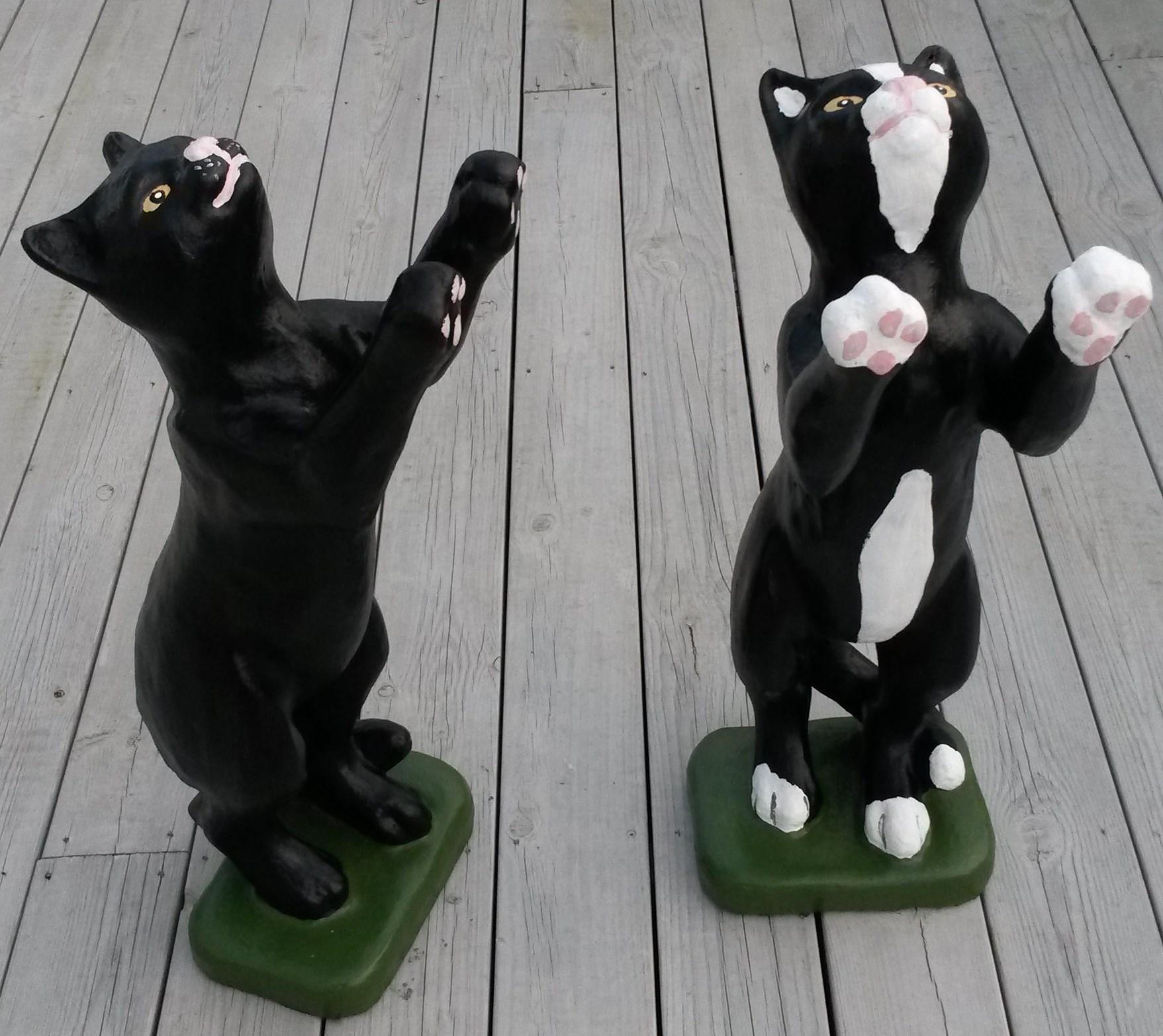 Katt staende