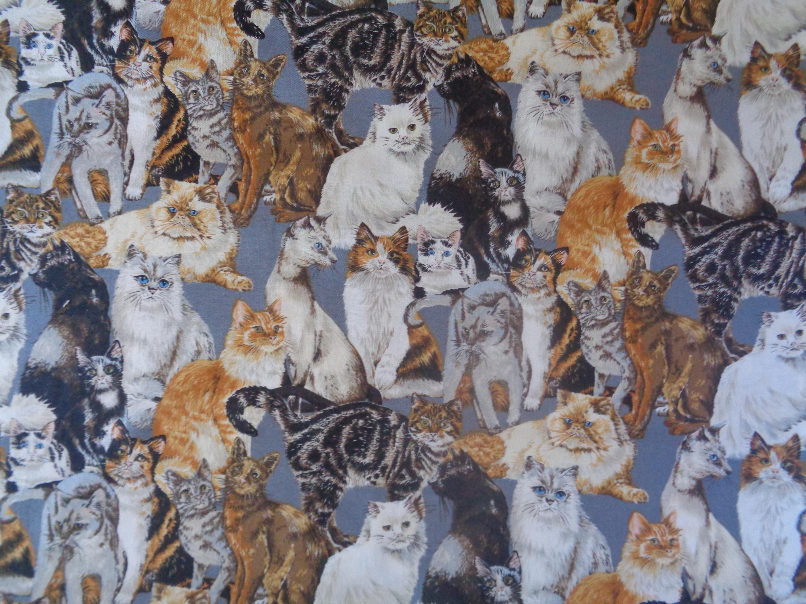 Mönstrat bomullstyg/quilttyg - Cats Corner