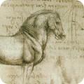 Bomullstyg teckningar och formler (Leonardo Da Vinci)
