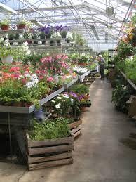 Snart är sommaren Här igen o växthuset uppfyllt.. snart .. snart :)