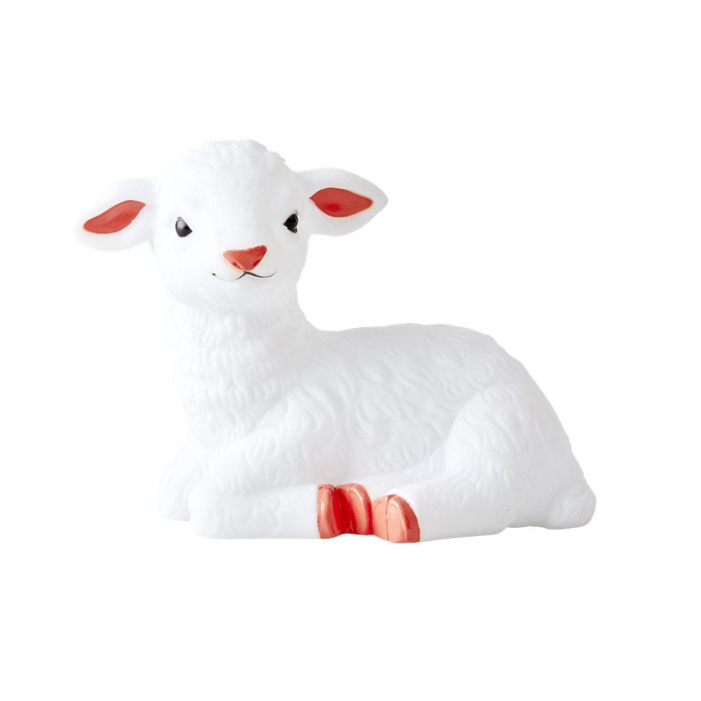 Nattlampa Lamm
