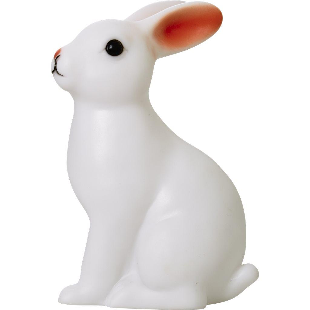 Nattlampa Kanin