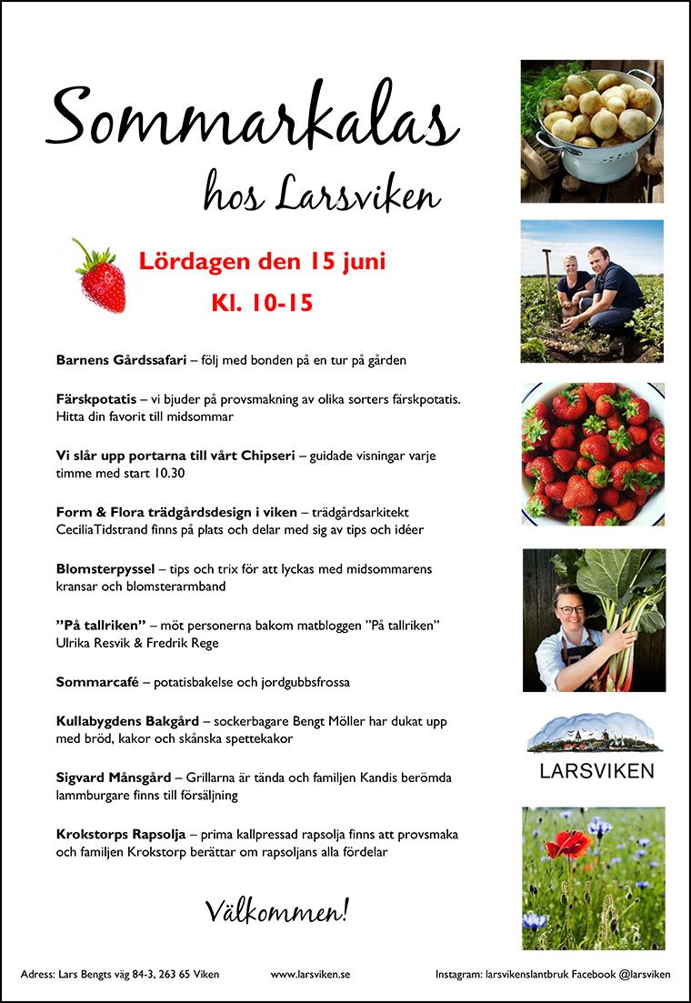 Sommarkalas hos Larsviken