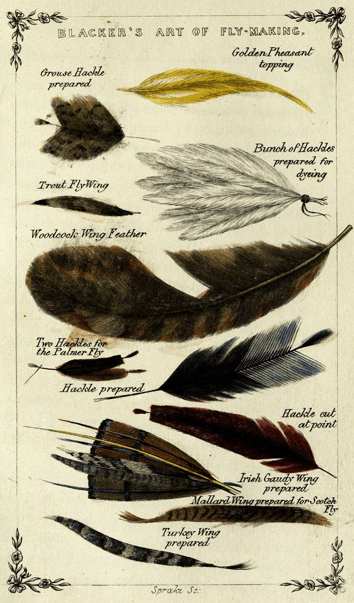 Illustration ur; Blacker's Art of Fly Making, &c. Comprising Angling, & Dyeing of Colours, with Engravings of Salmon & Trout Flies