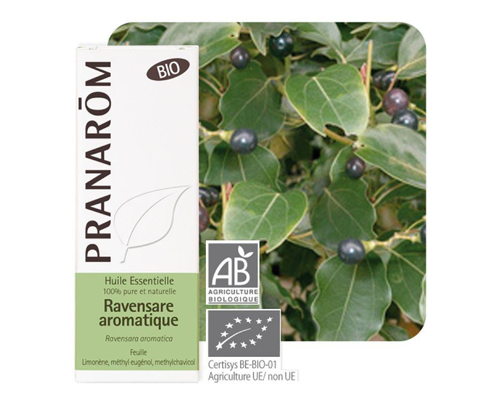 1783_ravensare_aromatique_ravensara_aromatica_10_ml.jpg.thumb_1000x800