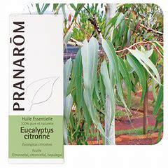 Citroneucalyptus eterisk olja EKO 10 ml
