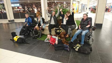 assistanshundar med ägare i svenska service och signalhundsförbundet