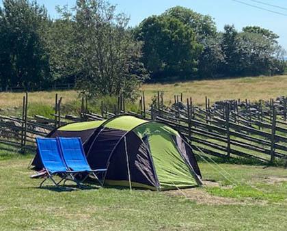 Boka och bo i våra fullt utrustade Tält eller Husvagn - Rödlix Camping & Vandrarhem längs Kattegattleden vid havet söder om Varberg.