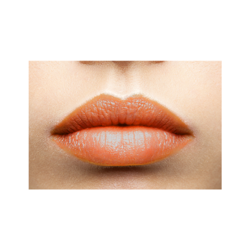 Lip Gloss Warm Copper läppar