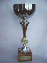 SHAKE™ doftoljor har fått internationella utmärkelser bl.a. UNESCOs miljöpris                      Klicka här för att se alla.