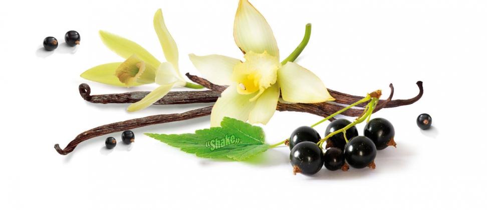 vanilj & svarta vinbär