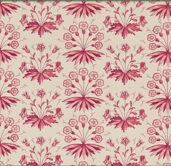 PRIMROSE & COLUMBINE Rosa L
