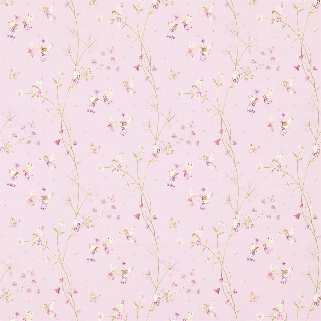 Fairyland Rosa
