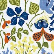 Herbarium Vit