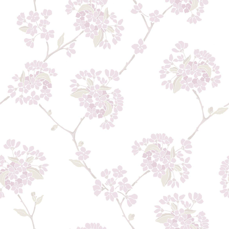 Körsbär Rosa