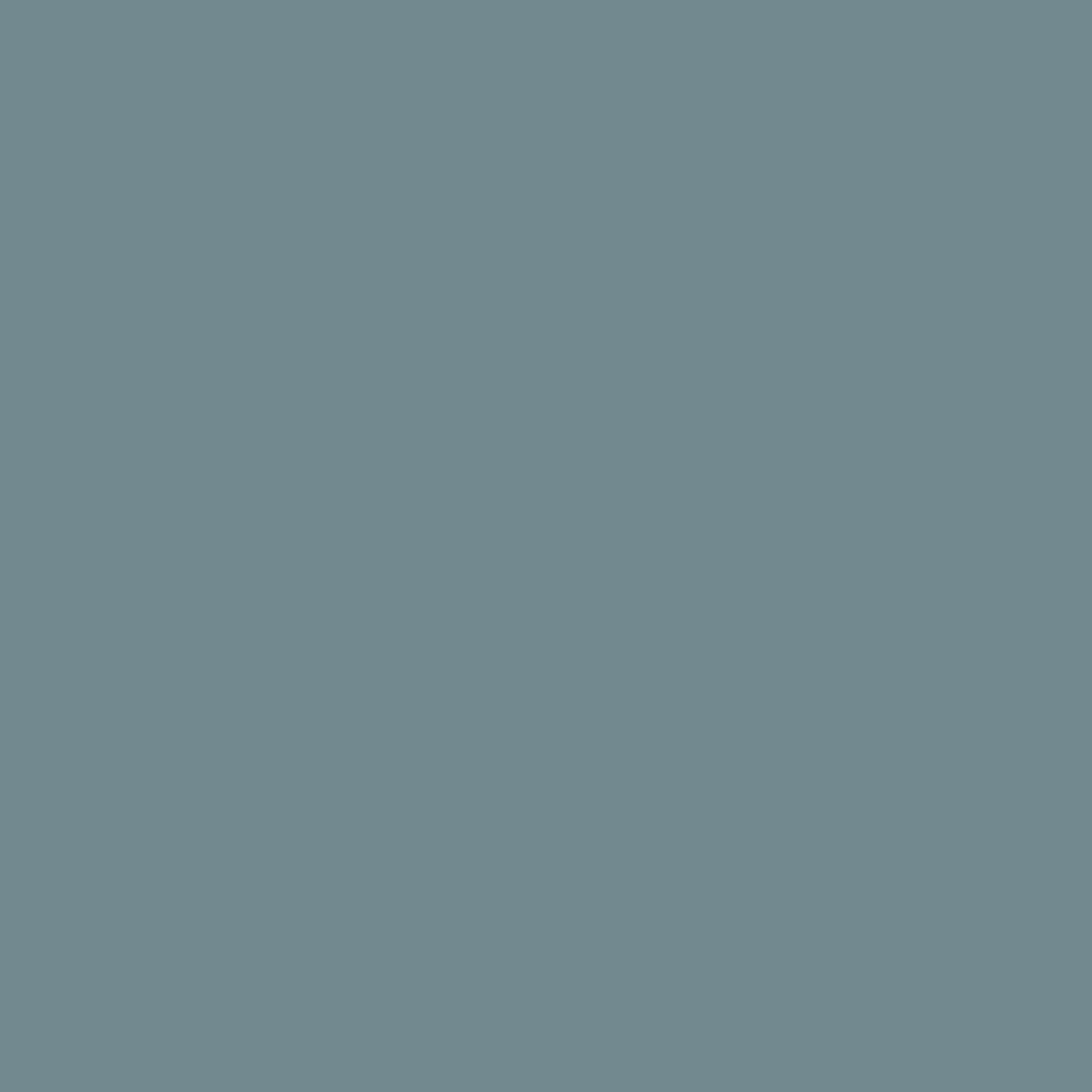 Wedgewood Blue