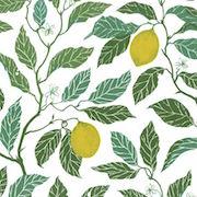 Tyg Ljungbergs - Citrus Limon - Tyg Ljungbergs - Citrus Limon Bomull