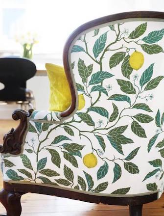 Citrus Limon Fåtölj