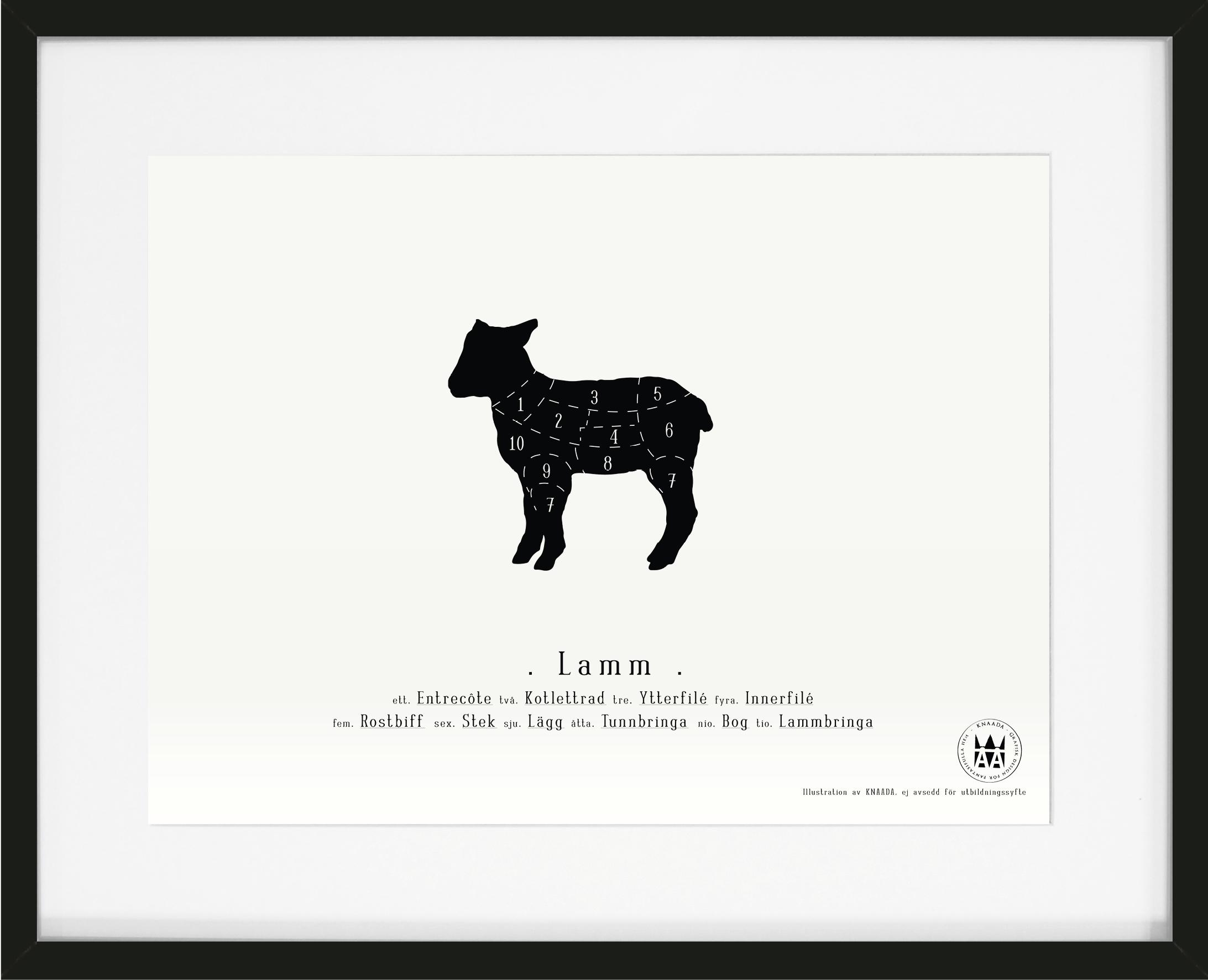 Poster Lamm