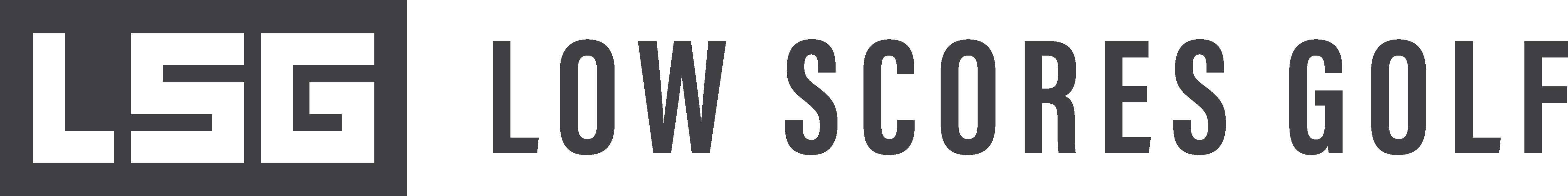 LSG V1_1