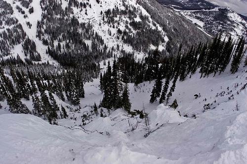 Åket sett från starten, innan 50 åkare hade hasat bort den lilla snö som fanns.