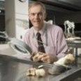 Professor Robert Bowker, VMD, PhD