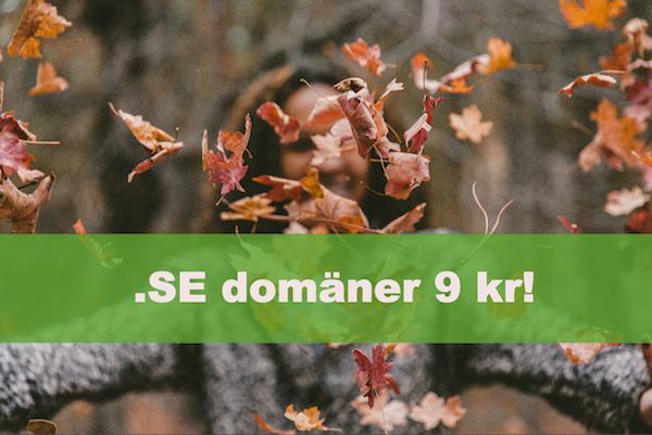 domän, .SE, hemsida24, kampanj