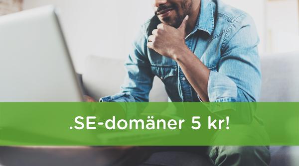 hemsida24. domäner, domän, domänkampanj, SE